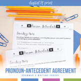 Pronoun Antecedents Task Cards