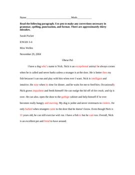 Grammar & Spelling Editing Paragraph