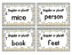 Grammar Task Cards: Singular and Plural Nouns Set
