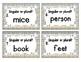Grammar Task Cards: Singular and Plural Nouns Set