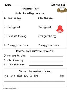 Grammar Test for Get the Egg! (Scott Foresman Reading Street)
