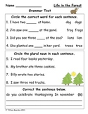 Grammar Test for Life in the Forest (Scott Foresman Reading Street)