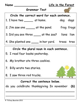Grammar Test for Life in the Forest (Scott Foresman Readin