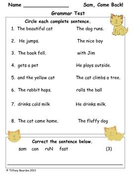 Grammar Test for Sam, Come Back! (Scott Foresman Reading Street)