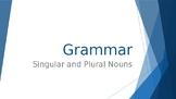Grammar Unit 2 Week 2 Day 1 Singular and Plural Nouns FREEBIE