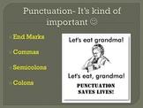 Grammar Unit: Commas, Semicolons, Colons, End Marks