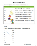 Grammar Worksheets ESL Levels 1-3 Middle and High School