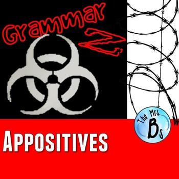 Grammar Z: Appositives