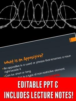Grammar Z PowerPoint Lesson: Appositives