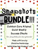 Grammar and Comprehension Snapshots BUNDLE- Weekly Assessments CCSS Grades 2 & 3