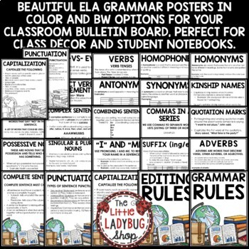 Grammar Posters & Anchor Charts [Language Arts Skills & Editing Rules]
