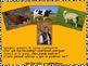 Granjero, granjero, ¿Por qué nos necesitas? – a bilingual book, farm theme
