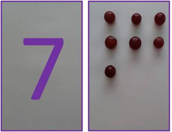 Grape Counting Cards Preschool Math Kindergarten Count Numbers