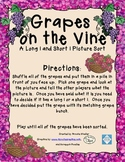 Grapes on the Vine - A Long i and Short i Picture Sort Game