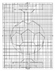 Graph a picture - soccer ball