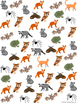 Graph and Tally Poster Sets: Nocturnal Animal Pictures