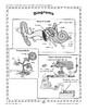 Graphic Components: Diagrams