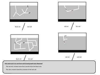 Graphic Data Interpretation