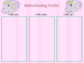 Graphic Organizer: All About Cells!
