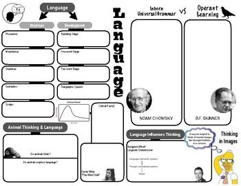 Graphic Organizer - Cognition