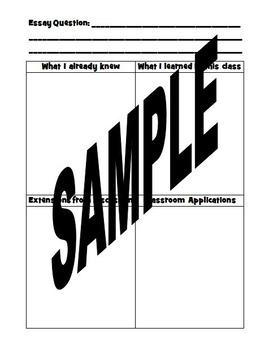 Graphic Organizer:  Essay and Professional Development Curriculum Planning