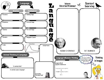 Graphic Organizer - Intelligence