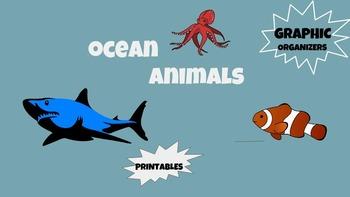 Graphic Organizer Printables Ocean Animals Sea Science