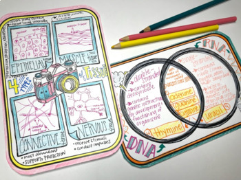 Graphic Organizer Review Cards: Huge Deck of Bite-Sized Doodle Note Templates