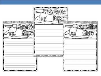 Graphic Organizers : Arctic Fox  - Polar and Arctic Animals