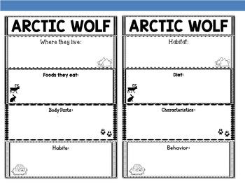 Graphic Organizer Bundle : Arctic wolf  - Polar and Arctic Animals
