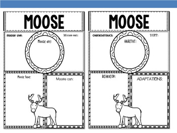 Graphic Organizers Bundle :  Moose  - Polar and Arctic Animals