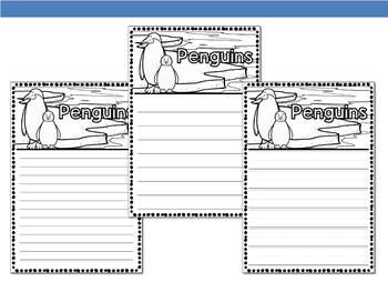Graphic Organizers Bundle : Penguins  - Polar and Arctic Animals