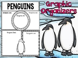 Graphic Organizers Bundle : Penguins  - Polar and Arctic Animals