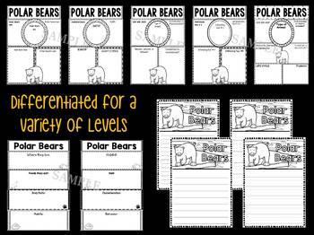 Graphic Organizers Set :  Polar Bears  - Polar and Arctic Animals