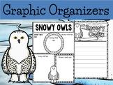 Graphic Organizers:  Snowy Owls  - Polar and Arctic Animals