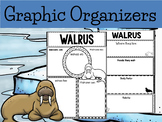 Graphic Organizer Bundle :  Walrus  - Polar and Arctic Animals