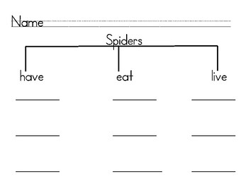 Graphic Organizer - Spider Writing for Kindergarten and 1st Grade FREE