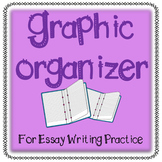 Graphic Organizer for Essay Writing