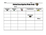 Graphic Organizer for First or Second Grade Animal Classif