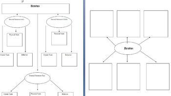 Graphic Organizer for Julius Caesar (Shakespeare)