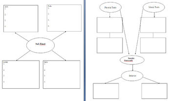 Graphic Organizer for Monster by Walter Dean Myers
