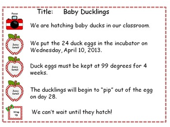 Graphic Organizer for Paragraph Writing for Beginning Writers