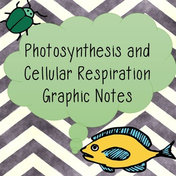 Photosynthesis and Cellular Respiration Graphic Notes