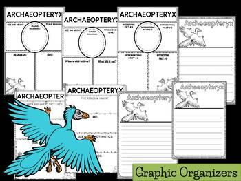 Graphic Organizers: Archaeopteryx  : Dinosaurs