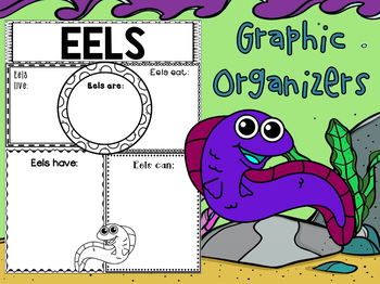 Graphic Organizers Bundle : Eels: Sea Ocean Animals, Informational Report
