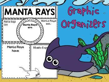 Graphic Organizers Bundle : Manta Rays  : Sea Ocean Animals, Report, Research