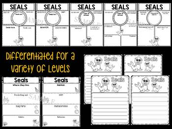 Graphic Organizers Bundle : Seals  : Sea Ocean Animals, Report, Research, Unit