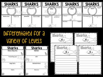 Graphic Organizers Bundle : Sharks : Sea Ocean Animals, Report, Research, Unit