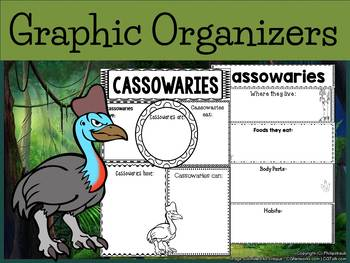 Graphic Organizers Bundle : Cassowaries - Animals : Australia, New Zealand