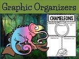 Graphic Organizers Bundle : Chameleons - Animals : Australia, New Zealand